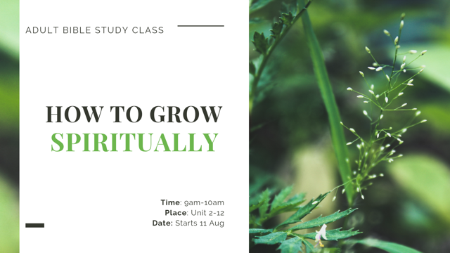 Adult Bible Study – Starting 11 August