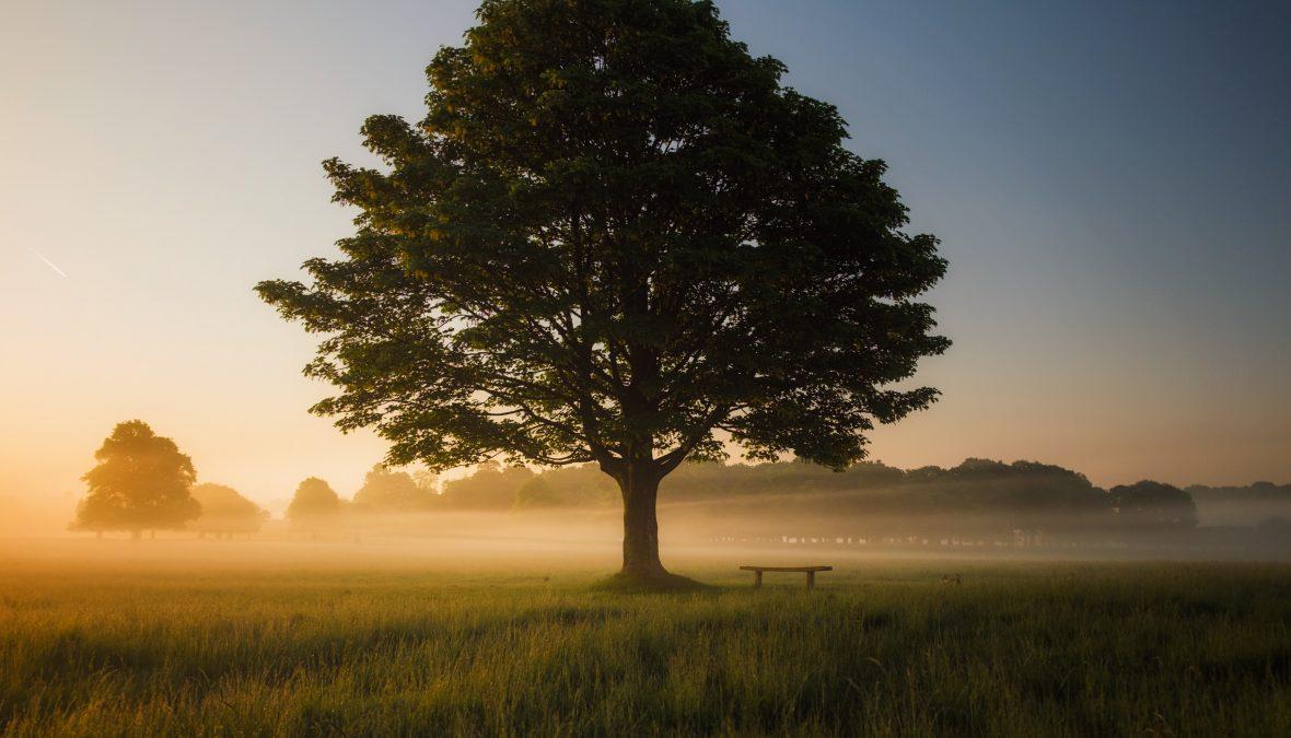 How to Grow Spiritually