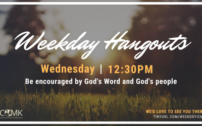 Weekday Hangouts – Wednesdays at 12:30 on Zoom