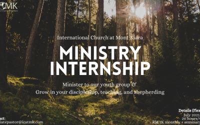 Youth Internship Opportunity – details flexible, contact Michael for more info