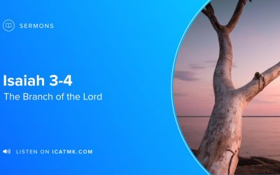 The Branch of the Lord