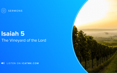 The Vineyard of the Lord